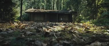 Хижина в лесу кадр