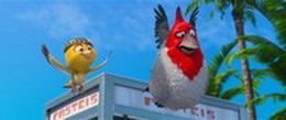 мультфильм Рио